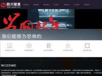 四川冠辰科技开发有限公司