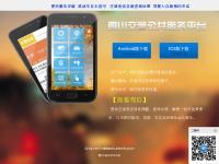 四川省公安交通管理信息网