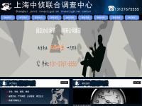 上海专业商务调查公司