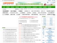 中国特岗教师网