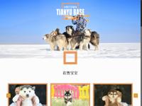天宇雪橇犬基地官方网站